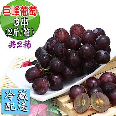 愛蜜果 巨峰葡萄3串箱裝共2箱~約2斤/每箱(冷藏配送)