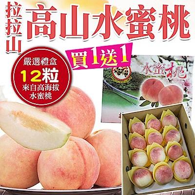 (買一送一)【天天果園】拉拉山水蜜桃12顆(2.8斤/盒) 共2盒