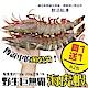 (買1送1)【海陸管家】巨無霸比臉大海虎蝦(每隻150g-200g) 共2隻 product thumbnail 1