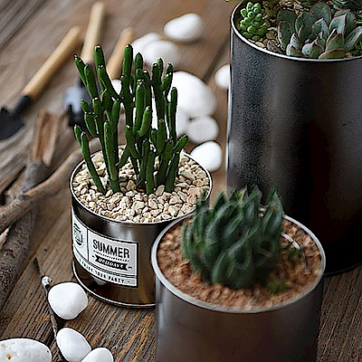 Meric Garden 創意北歐ins風鐵罐/盆栽收納罐_無蓋黑色2入組(大+小)