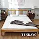 TENDAYS DISCOVERY 柔眠床墊(晨曦白) 5尺標準雙人 8.5cm厚-買床送枕 product thumbnail 1