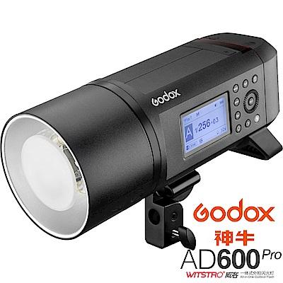 GODOX 神牛 AD600 Pro 600W TTL 鋰電池一體式外拍燈 (公司貨)