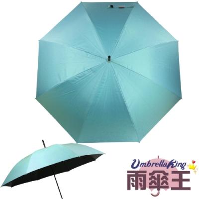 雨傘王 終身免費維修 BigRed 輕巧無敵自動直傘-水藍