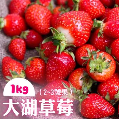 家購網嚴選 鮮豔欲滴大湖香水草莓1公斤/盒(2~3號果)