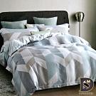 岱思夢 加大 100%天絲床罩組 八件式 TENCEL 伯格