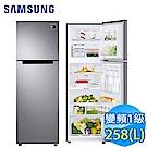 SAMSUNG三星 258L 1級變頻2門電冰箱 RT25M4015S8/TW