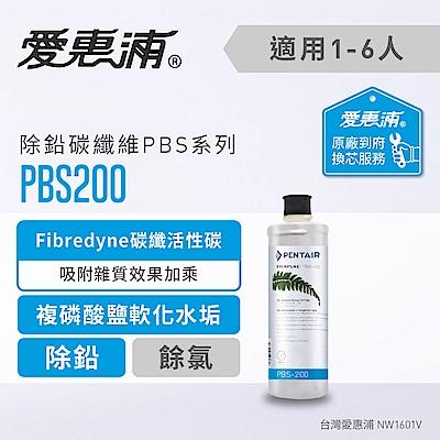 愛惠浦 到府安裝 除鉛碳纖維系列濾芯 EVERPURE PBS200