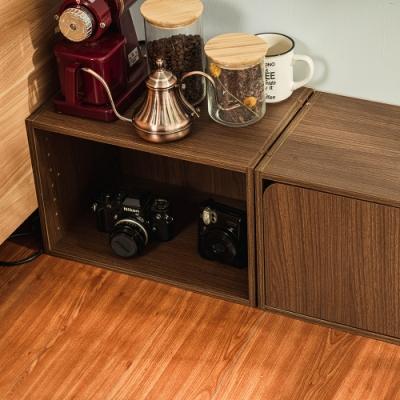 樂嫚妮 收納櫃/空櫃/書櫃/門櫃-層板可抽-淺胡桃木色2入組