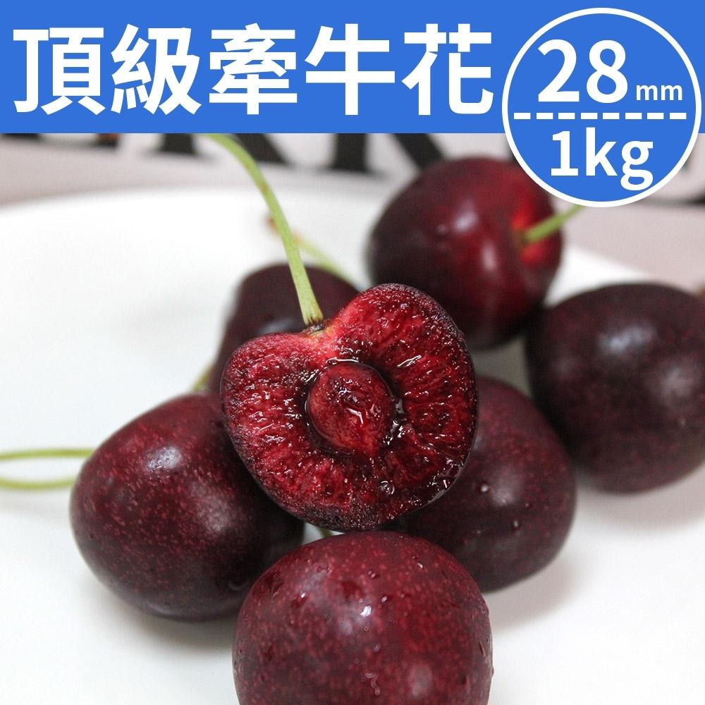【甜露露】紐西蘭牽牛花櫻桃28mm(1kg)