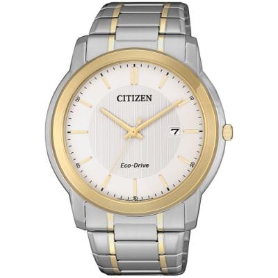 CITIZEN 星辰 光動能都市紳士風範時尚男錶(AW1216-86A)-雙色/42mm