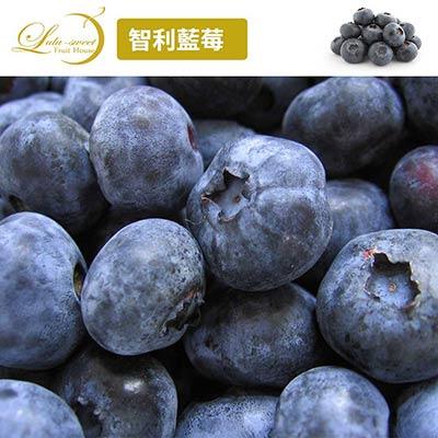 [甜露露]智利藍莓12盒入(125g)