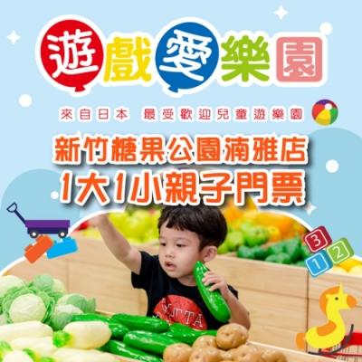 【新竹】遊戲愛樂園糖果公園湳雅店1大1小親子門票(2張組)