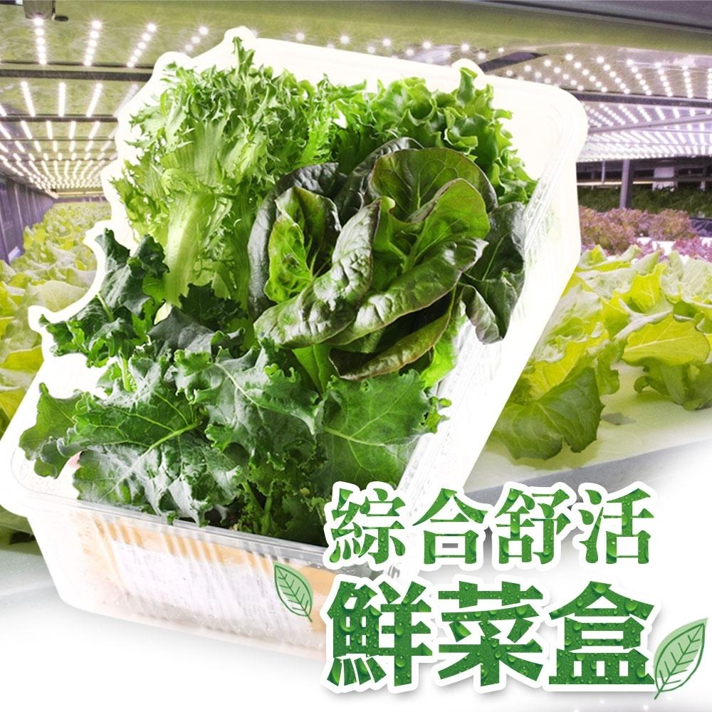【愛上新鮮】新鮮爽脆鮮菜6盒(150g±5%/包)