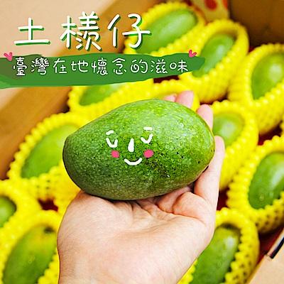 【鮮果日誌】盛夏土芒果(3台斤禮盒裝)