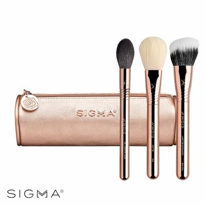 Sigma 流光溢彩三件組(附化妝包) Bloom + Glow Brush Set