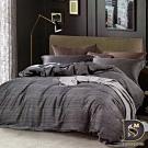 岱思夢 雙人 100%天絲床罩組 八件式 TENCEL 安東尼