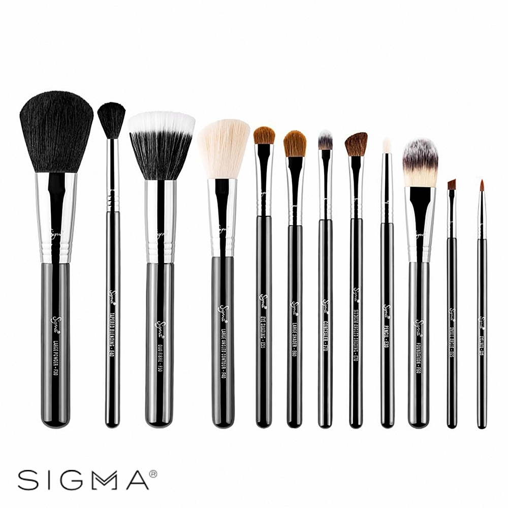 Sigma 刷具12件組-Essential Brush Kit