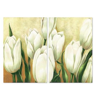 美學365 二聯 時尚無框畫掛畫-白色花卉 40x60cm