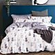 Ania Casa 100%天絲 加大鋪棉兩用被套床包四件組 -多款任選
