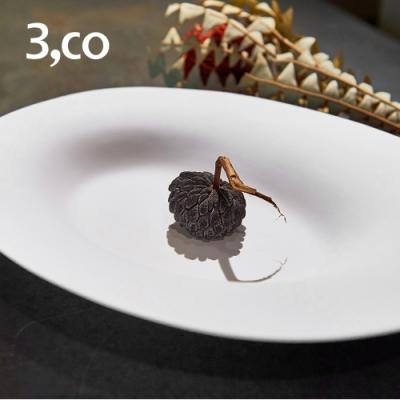 3,co 海洋橢圓盤(大) - 白