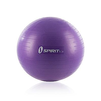 防爆瑜珈健身球 - 65cm - Spirit TCR