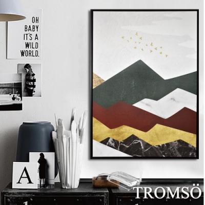 TROMSO 時尚風華抽象有框畫大幅-暖陽飛鳥W967