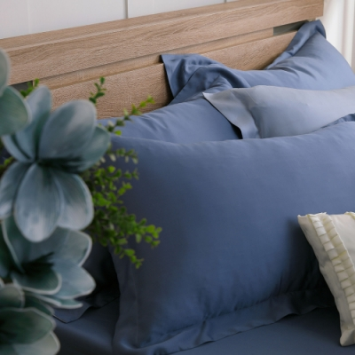 鴻宇 天絲枕套2入 天絲300織 歐式壓框枕套 波納藍 台灣製