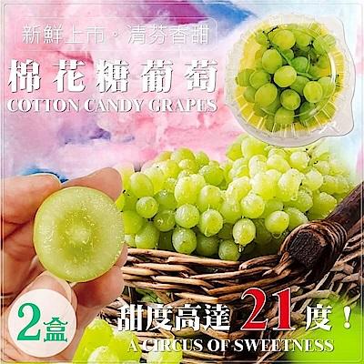 【天天果園】美國加州棉花糖葡萄(每盒約500g) x2盒