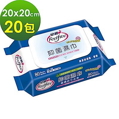 【福利品】安親 加蓋抑菌濕巾 成人加大濕紙巾 (80抽x20包)