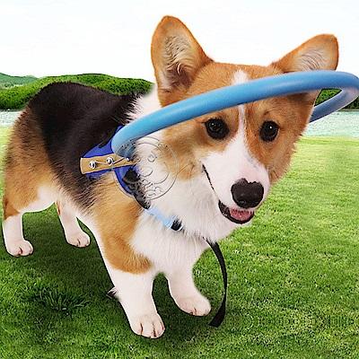 dyy》狗狗失明寵物防撞圈瞎子狗貓防撞環白內障動物保護圈導盲圈保護罩