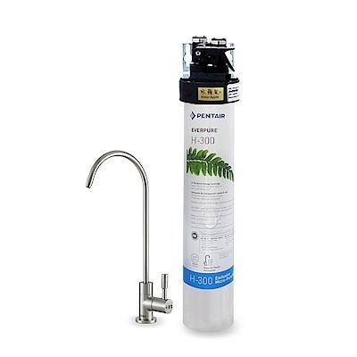 水蘋果公司貨 EVERPURE QL3-H300 單道淨水器