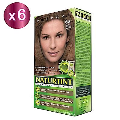 NATURTINT 赫本染髮劑 6G 金棕色x6 (155ml/盒)