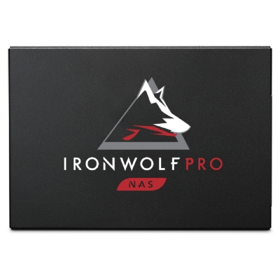 Seagate【那嘶狼 IronWolf Pro 125】960GB 2.5吋 SATAIII SSD固態硬碟(ZA960NX1A001)