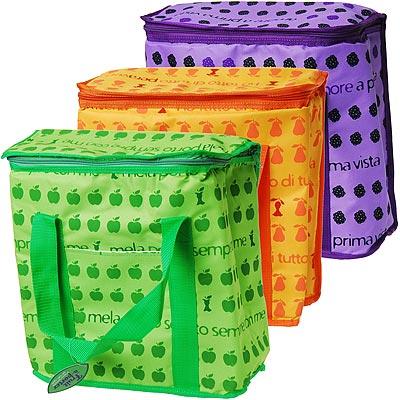 《EXCELSA》野餐保冷袋(水果20L)