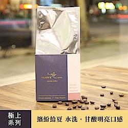 哈亞極品咖啡 極上系列 繽紛給夏水洗咖啡豆(300g)