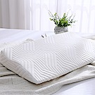 Cozy inn 護肩頸型記憶枕(1入)