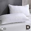 岱思夢 3M防潑水技術枕頭保潔墊2入組 日本大和防蹣抗菌 兩色任選