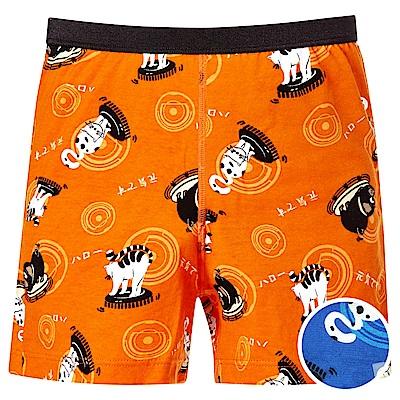 DADADO-哈囉 110-130 男童內褲(藍)品牌推薦