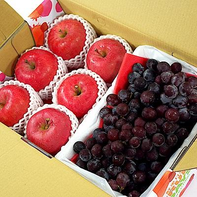 【鮮果日誌】王牌健康禮盒(智利富士蘋果6入+巨峰葡萄2.5台斤)
