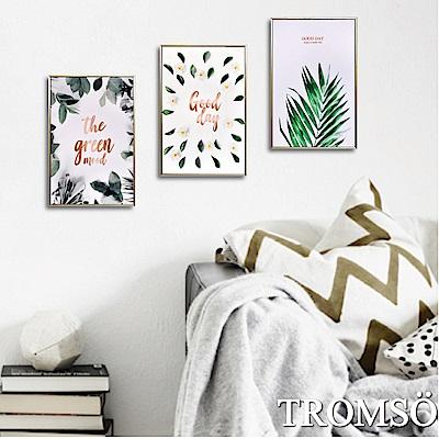 TROMSO 北歐生活版畫有框畫-金采綠葉WA92(三幅一組)