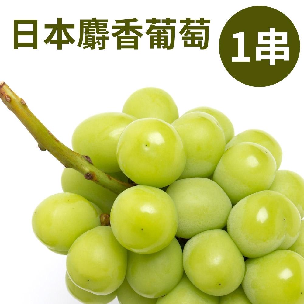 甜露露 日本香印麝香葡萄1串入(450-500g)