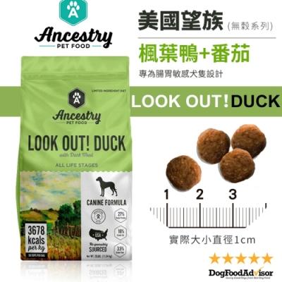 美國Ancestry望族天然無穀低敏犬糧-美國楓葉鴨+番茄 12LBS(5.44kg)