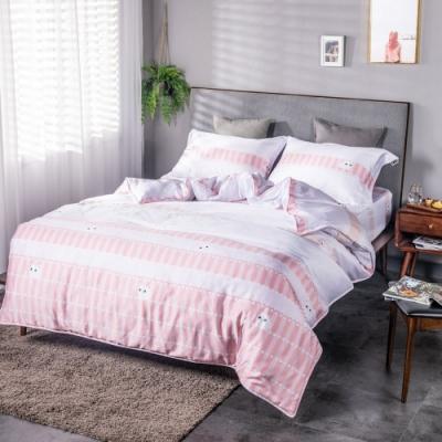 夢工場貓的夢想40支紗萊賽爾天絲四件式兩用被床包組-特大