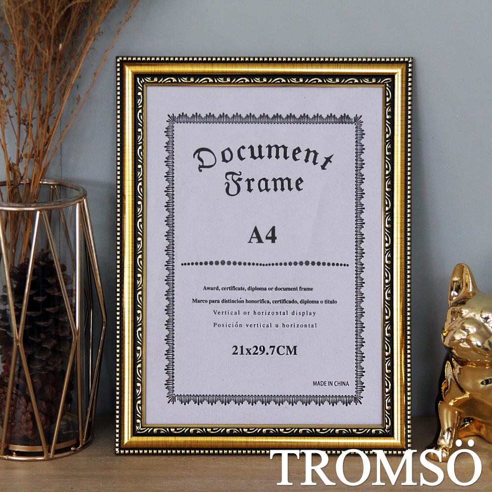 TROMSO 極致榮耀A4相框-Q款