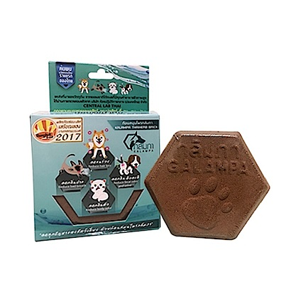 泰國寵物喝水神仙磚《淨水神仙磚》8.8oz/顆 X2顆