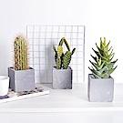 【Meric Garden】北歐風創意仿真多肉綠植物水泥中盆栽- 柱型仙人掌