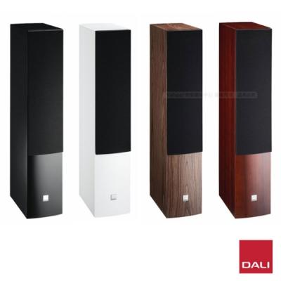 丹麥 DALI RUBICON 6 主聲道喇叭 / 揚聲器 (一對)
