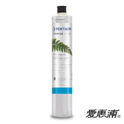 愛惠浦 EF series全流量強效碳纖維系列濾芯 EVERPURE EF6000