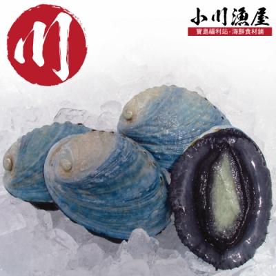 小川漁屋 極品紐西蘭活凍帶殼鮑魚4顆(60g+-10%/顆)