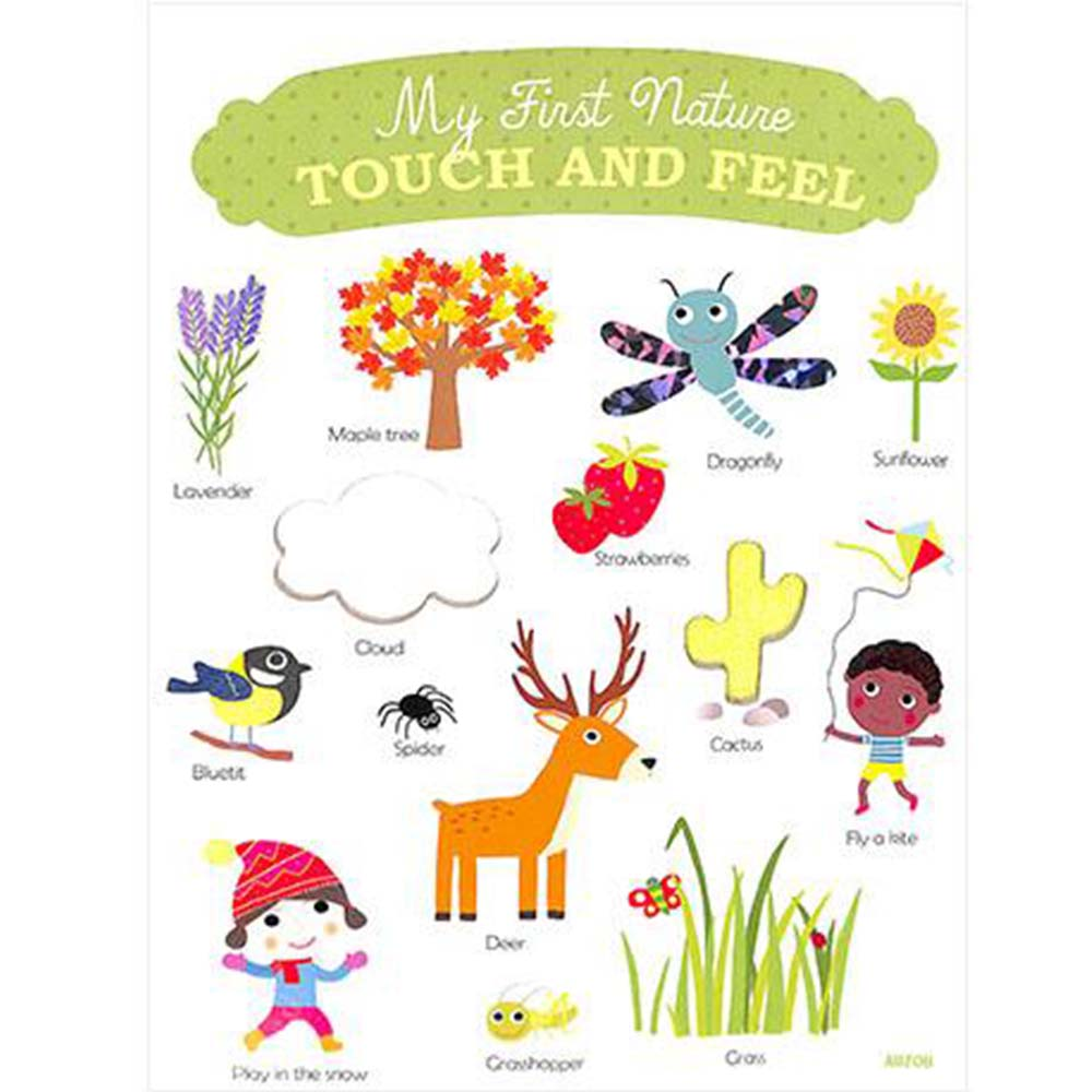 My First Nature Touch And Feel 大自然觸摸書
